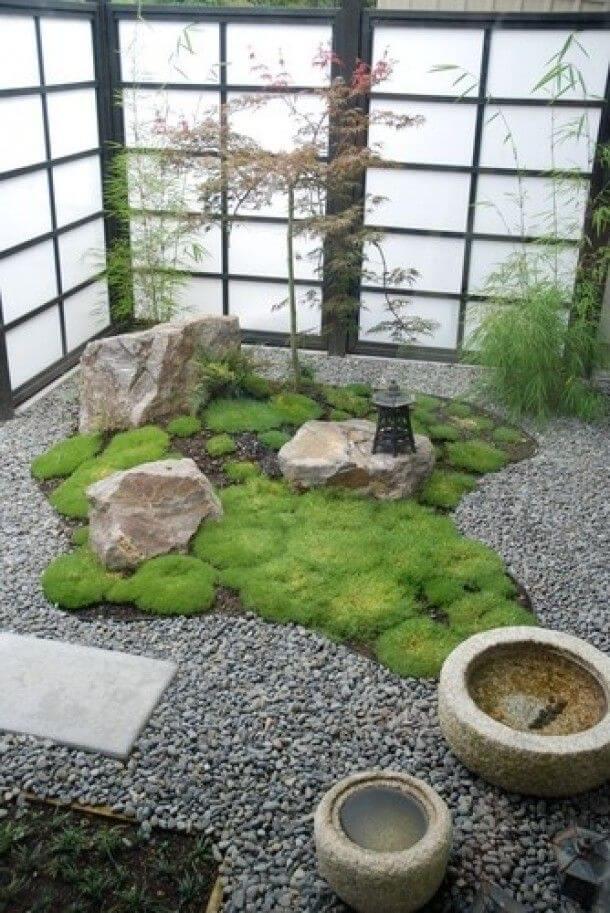 indoor-plants-zen